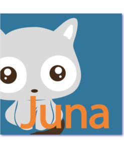 Deze design geboortekaart poesje is leuk en origineel. Blauwe achtergrond met de naam juna in oranje letters, voor meisjes en jongens.
