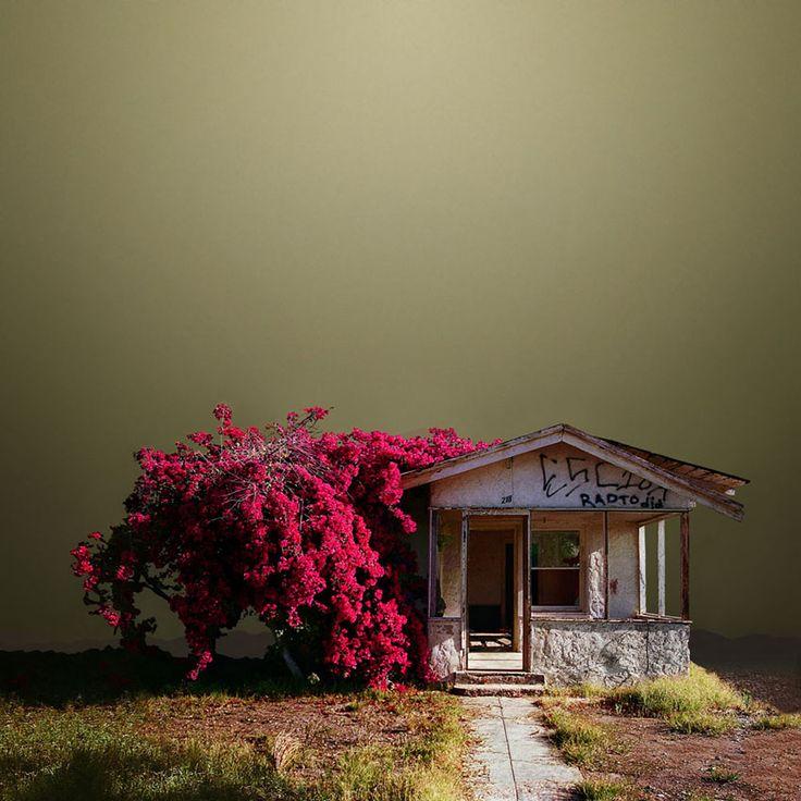 Ed Freeman - Desert Realty / Urban Realty #architecture series