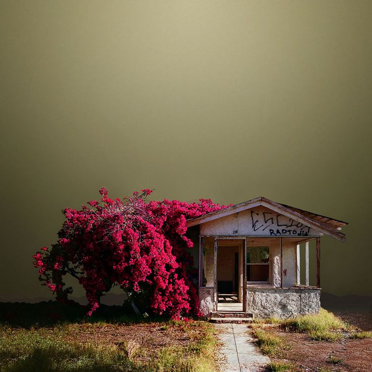 Photography, Architecture Series by Ed Freeman
