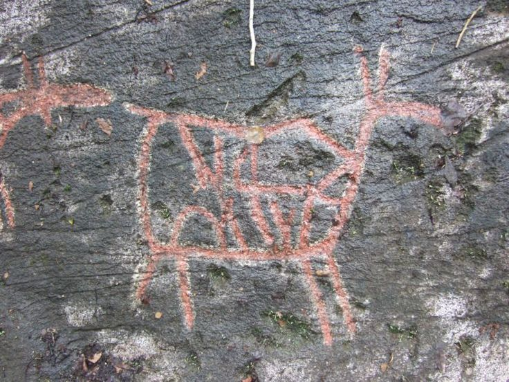 Ideas about stone age cave paintings on pinterest