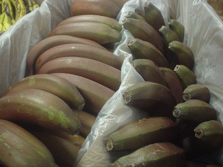 Red bananas! Fresh in this week at our store.