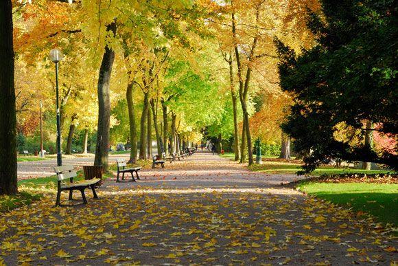 Parque Orangerie, em Estrasburgo,Luigi Rotelli
