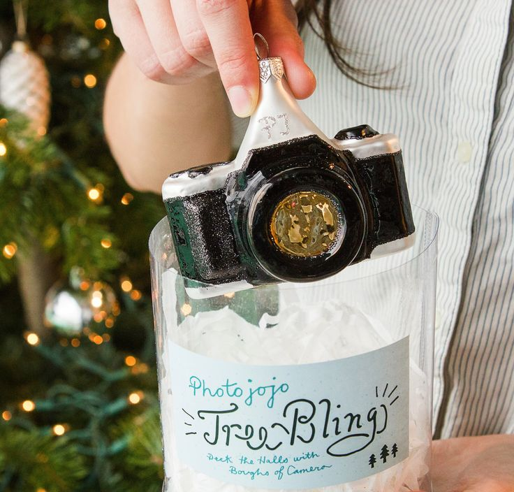It's about time your tree had its very own camera. $25