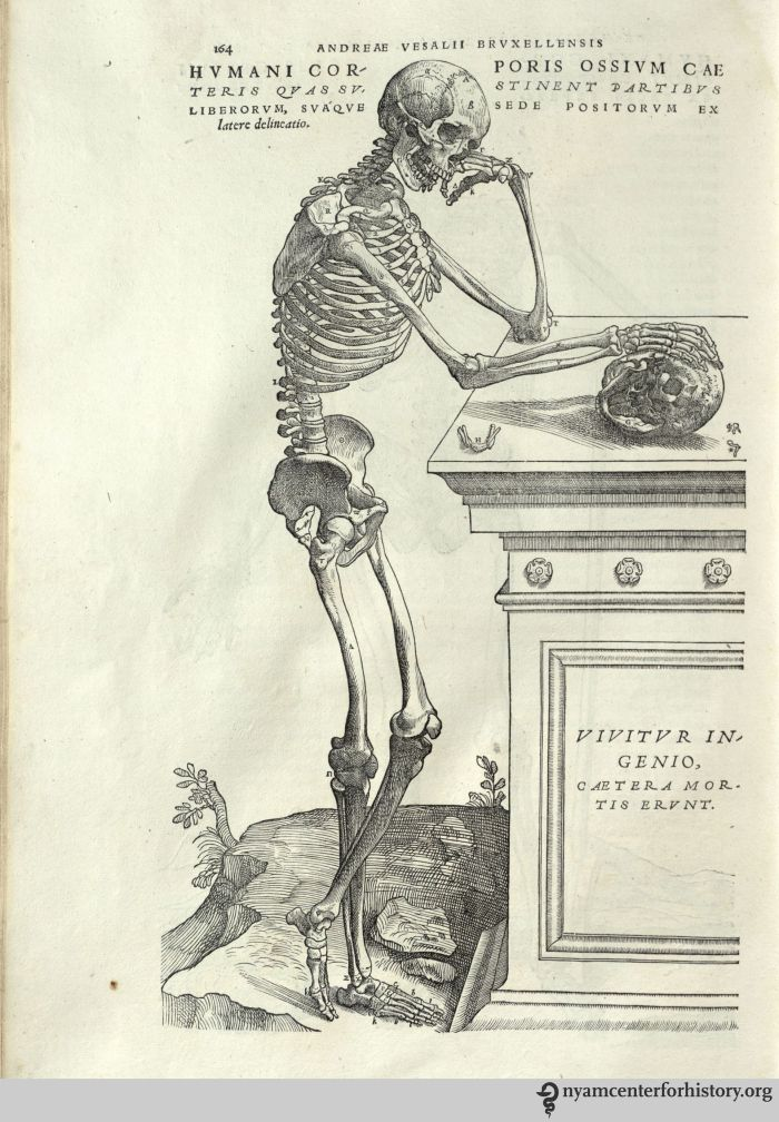 Charles Stephanus Estienne Books, Health and History