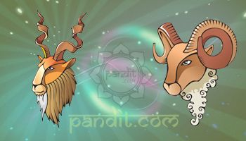 """CAPRICORN AND ARIES COMPATIBILITY by Astrologer Rahul Kaushal  ------------------------------------------------------- There is more likely to be a clash of personalities than an instant attraction. With Aries, """"now"""" is too late because of his impulsiveness, with Capricorn a decade is too soon.  http://www.pandit.com/capricorn-love-sign-compatibility/"""