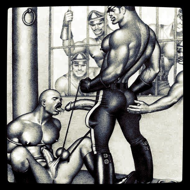 gay blake mason marcus