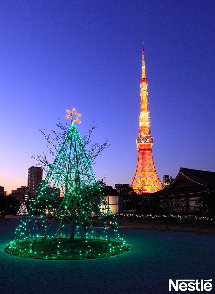 画像A 東京タワーとクリスマスツリー  クリスマスツリー/クリスマス/Christmas