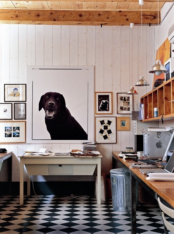 Love the idea of a great big print of my pup