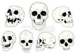 """Résultat de recherche d'images pour """"squelette illustrator"""""""