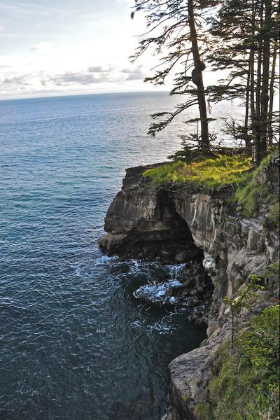 West Coast Trail: 47 mile long backpacking trail following the southwestern edge of Vancouver Island. I'm adding this to the hiking bucket list!