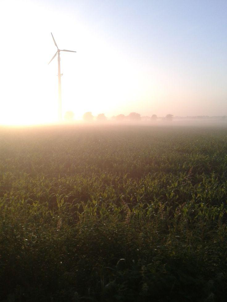 Windkrafträder sorgen in Ostfriesland für saubere Energie. Ein tolles Panorama hier beim Sonnenaufgang in der ostfriesischen Moorlandschaft im Landkreis Wittmund.