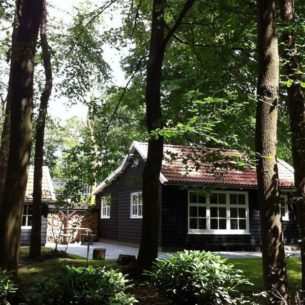 Boshuis Nij Hildenberg vakantiewoning 8 personen in het bos