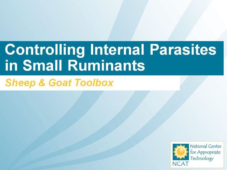 Controlling Internal Parasites in Small Ruminants PowerPoint | NCAT