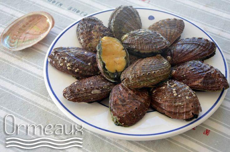 Les 238 meilleures images propos de cuisine moules et autres coquillages sur pinterest - Comment cuisiner des palourdes ...