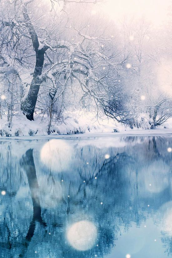 it looks like a scene out of Frozen - gorgeous view of a pond in winter, in Vitaliy Bovank