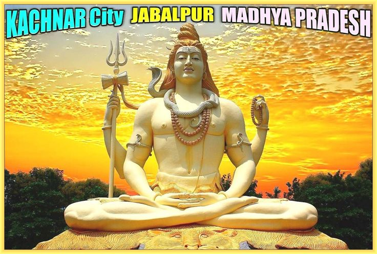 76 feet height tallest Yogic posture sculpture of Lord Shiva is located at Kachnar City, Jabalpur in the state of Madhya Pradesh, India. Kachnar City is the nickname of Vijayanagar, a newly developed posh locality of Jabalpur city. Lord Shiva idol here is the latest tourist attraction of Jabalpur city hence it becomes the pride of Jabalpur. With the development of Kachnar City, the builders developed 76 feet high statue of Lord Shiva under the open-sky. It also houses a cavern