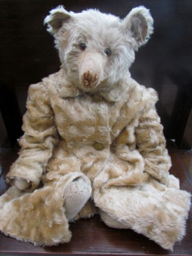fine old bear wearing a mohair coat w/ teddy bear buttons