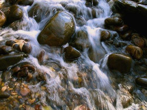 Rock water, acqua di sorgente Fiori di Bach