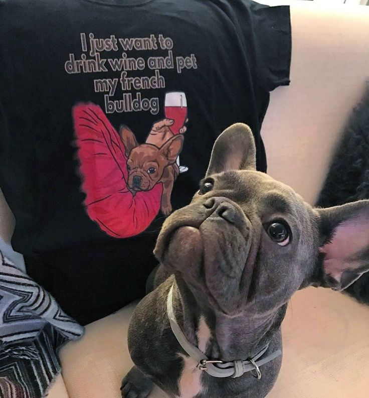 "Floyd rocking the ""Wine"" t-shirt"