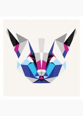 grafika KOT // Bongo design
