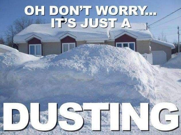 Oh no snow is coming!😲   Winter humor, Snow meme, Funny