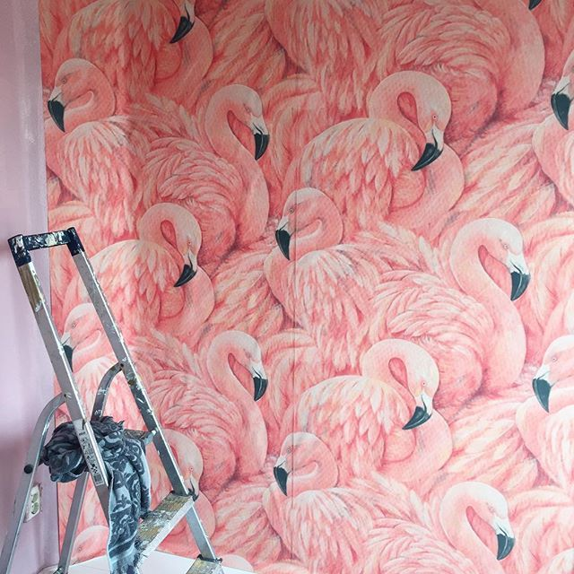 Busy in de babykamer.... Met behang van Wallgiant! Flamingo's woehoe! #homesweethome #inspiration #inspiratie #inspo #homeinspo #flamingo #behang #wallpaper #klussen #diy #doehetzelf #wonen #interior #interieur #interiorstyling #girl #pregnant #pregnancy #zwanger #zwangerschap #thuis #inspiration #lekkerbezig