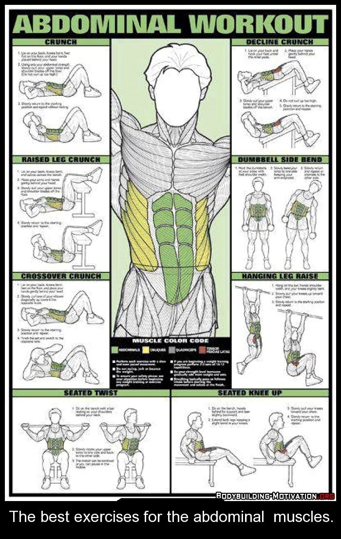 The best exercises for the abdominal muscles.