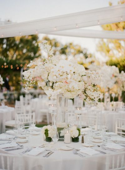 Gorgeous ivory and blush centerpieces: http://www.stylemepretty.com/2015/01/08/elegant-blush-ivory-outdoor-wedding/   Photography: Sylvie Gil - http://www.sylviegilphotography.com/