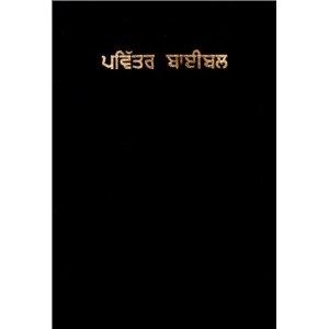Punjabi Bible  $45.99
