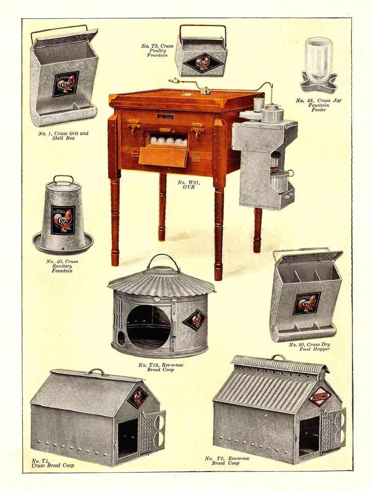 Vintage Poultry Equipment Ad