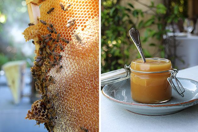 Sustainable honey 'farm-to-plate' http://www.borgosantopietro.com/en/life-borgo-santo-pietro/borgo-farm/