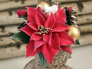 В преддверии Рождества и Нового года предлагаю вашему вниманию пошаговый мастер-класс по лепке цветка пуансеттии (или рождественской звезды) из полимерной глины 'CLAYCRAFT by DECO'. Для мастер-класса я слепила пуансеттию красного цвета, поэтому использовала белую и красную глину. Помимо глины для создания цветка мне понадобилось: молд листа (форма с фактурой листа, если ее нет, можно прожилки…