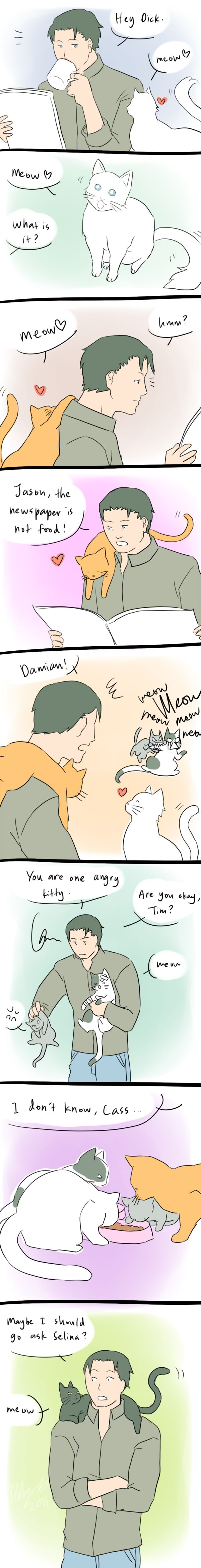 Felines. by *Colours07 on deviantART nice to see batman is a cat person