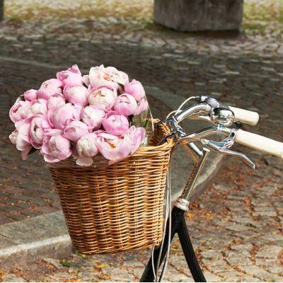 Grand panier sur guidon de vélo en rotin Darcy L Basil