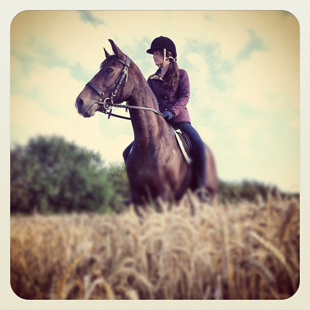Best age to start Horseback riding lessons? Also help with ...
