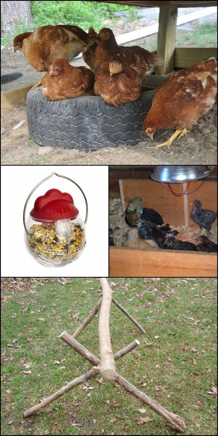 best 25 chicken toys ideas on pinterest diy chicken toys diy