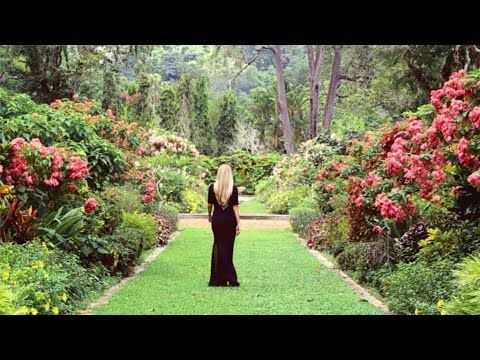 "Новое видео «Timeless beauty» от #AurumBloom.  Режиссер Ruslan Pelykh. ____________  New video ""Timeless beauty"" from Aurum Bloom.  Directed by Ruslan Pelykh."