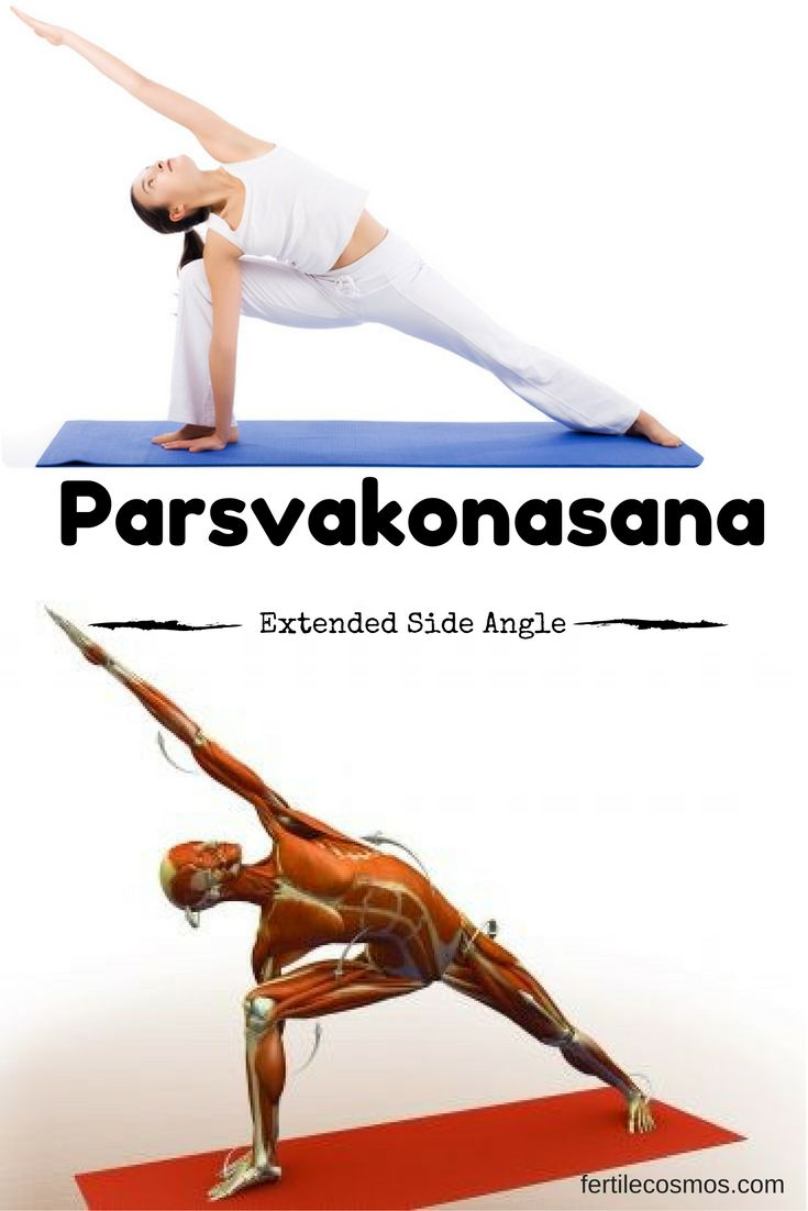 Parsvakonasana or Extended Side Angle Pose can help relieve stiffness in the shoulders and back. It provides a deep stretch to the groins and hamstrings, and it also improves stamina.