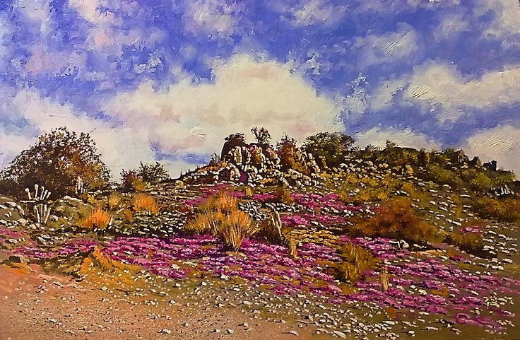 """""""Karoo landscape with Violet flowers""""   400 x 600mm  ( 24 x 16 inches ) - oils & brush"""