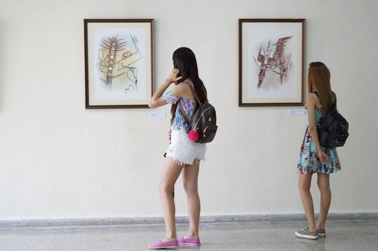El Museo Orgánico Romerillo (MOR) es una gran plataforma de obras artísticas sin distinción de formato, temporalidad o espacio que nació del trabajo gradual y sostenible, emanado de la relación arte-sociedad, pueblo- artista-barrio.