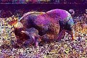 "New artwork for sale! - "" Pot Bellied Pig Pig Pet Livestock  by PixBreak Art "" - http://ift.tt/2uopbBg"