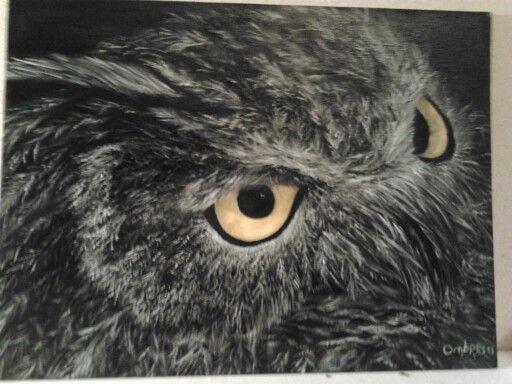 Gufo Tecnica w.oil - tela 40×30