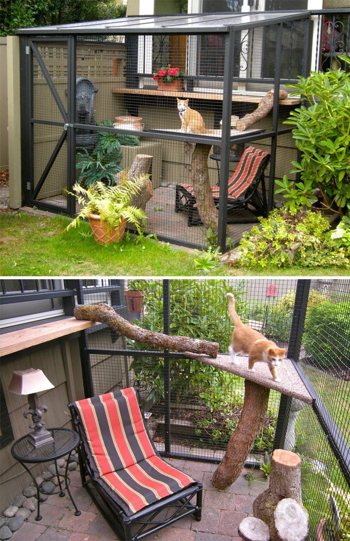 These Are The Most Epic Cat Patios Aka Catios We Ve Ever Seen Cat Patio Outdoor Cat Enclosure Indoor Cat