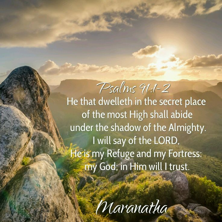 #Psalms 91:1-16 (KJV)  He that dwelleth in the secret place of the most High shall abide under the shadow of the Almighty. I will say of the LORD, He is my refuge and my fortress: my God; in him will I trust.  #MARANATHA