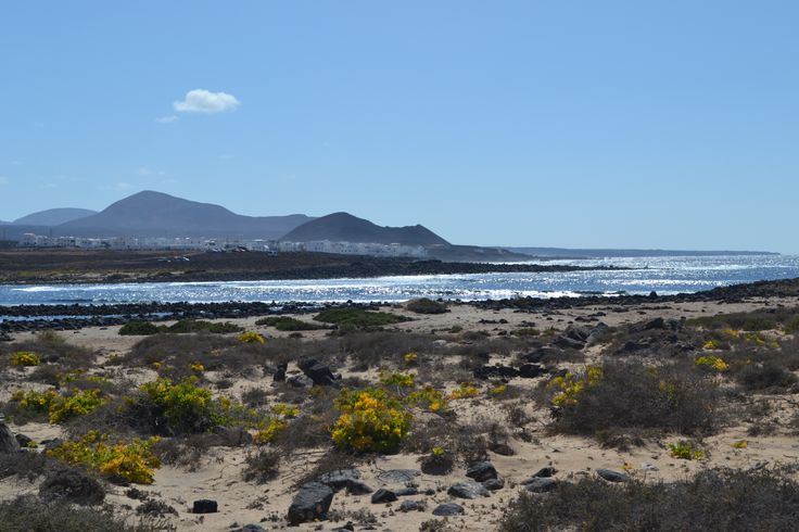 It's a lovely Monday morning in Lanzarote, sunny with a light breeze 0-15 km/h from the north west for today and 27 degrees.Image: La Santa Village Published 19th May 2014