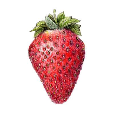 how to get strawberry seeds to grow