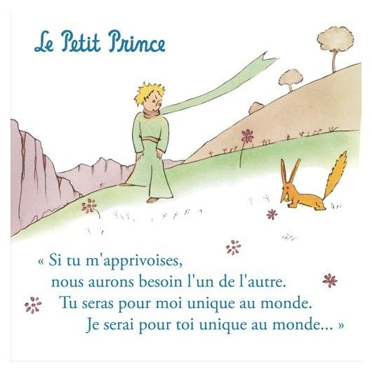 "Discover a wonderful serie of 9 art prints representing the original artwork of Saint-Exupéry. You will find in particular this illustration of the Little Prince with his rose with the following quote (in french):  ""Qu'est ce que signifie apprivoiser ?""."