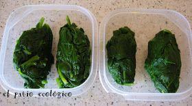 EL PATIO ECOLÓGICO: cómo congelar espinacas