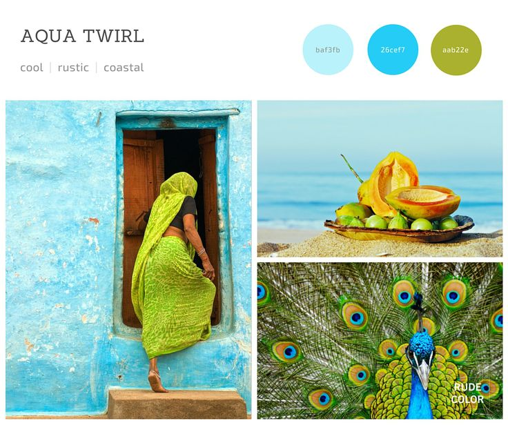 Rudecolor_India_Color_Trends_13 #inspiration #trends #2016 #colortrends #colorscheme #color #palette #scheme
