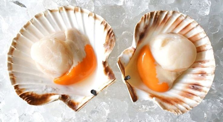 Sea scallops are an excellent source of  vitamin B12, which helps in the formation of red blood cells.